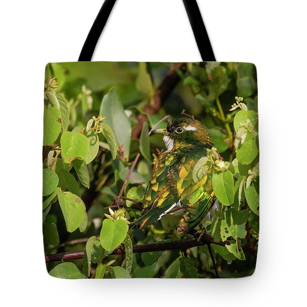 Tote Bag featuring the photograph Klaas's Cuckoo by Thomas Kallmeyer