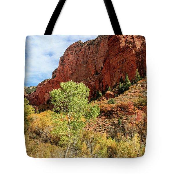Kolob Canyon 1, Zion National Park Tote Bag