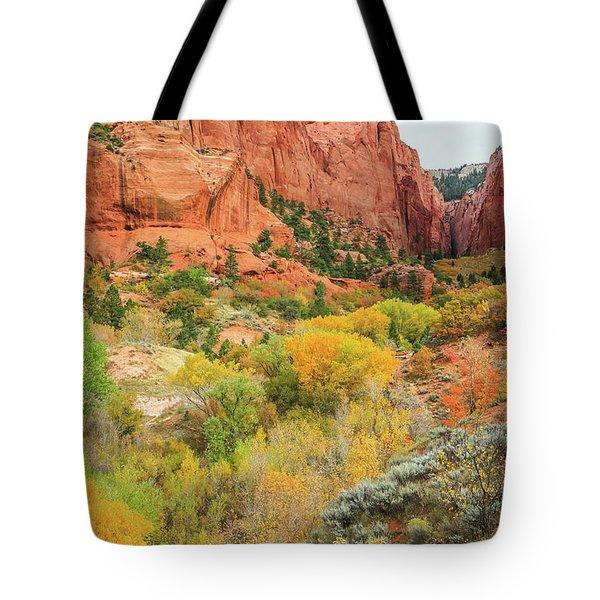 Kolob Canyon 2, Zion National Park Tote Bag