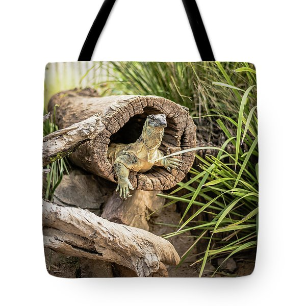 Lace Monitor During The Day. Tote Bag