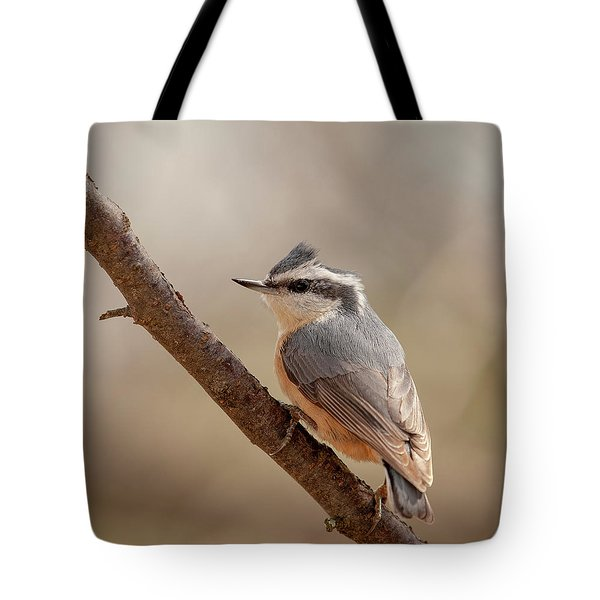 Lady Red-breasted Nuthatch Tote Bag