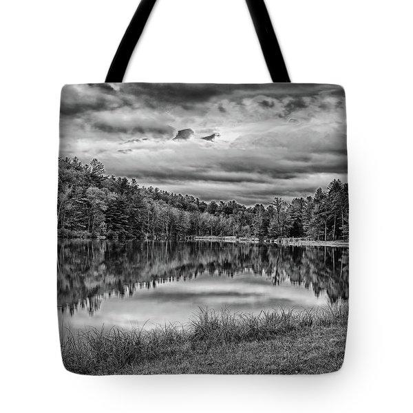 Lake Effect Tote Bag