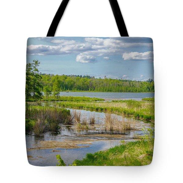 Lake Itasca Beauty Tote Bag
