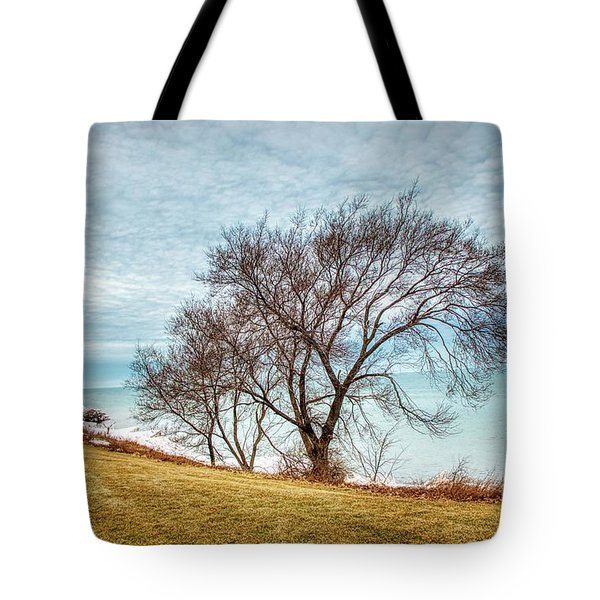 Lakeshore Lonely Tree Tote Bag