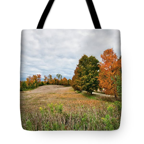 Landscape In The Fall Tote Bag