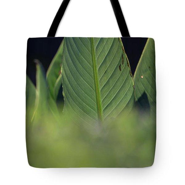 Large Dark Green Leaves Tote Bag