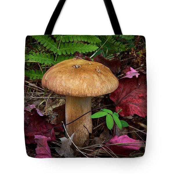Large Mushroom Tote Bag