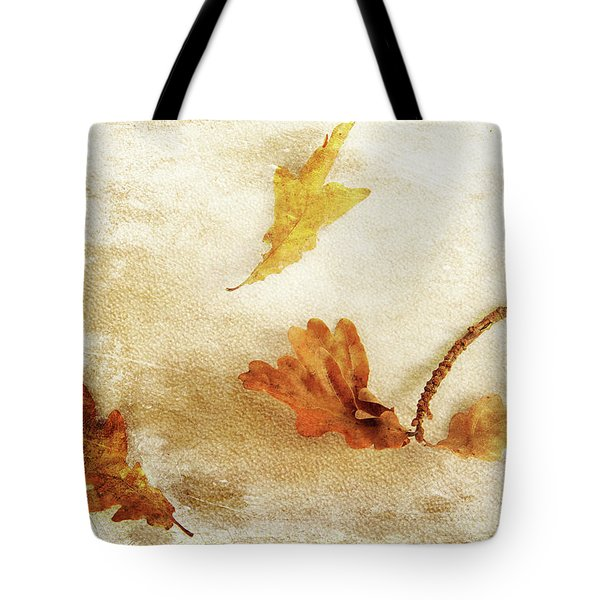 Tote Bag featuring the photograph Last Days Of Fall by Randi Grace Nilsberg