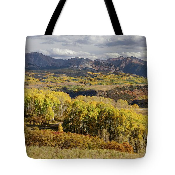 Tote Bag featuring the photograph Last Dollar Road by James BO Insogna