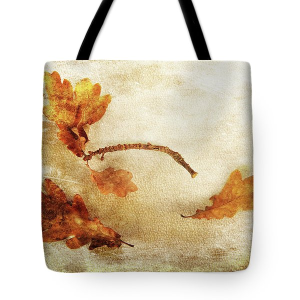 Tote Bag featuring the photograph Late Late Fall by Randi Grace Nilsberg