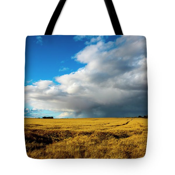 Late Summer Storm With Tornado Tote Bag