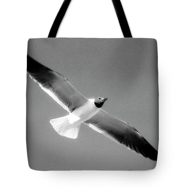 Laughing Seagull Tote Bag