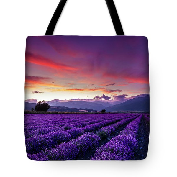 Lavender Season Tote Bag