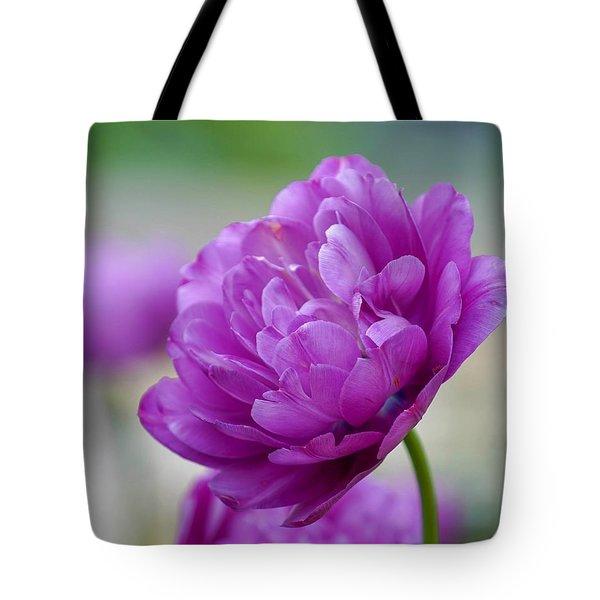 Lavender Tulip Tote Bag