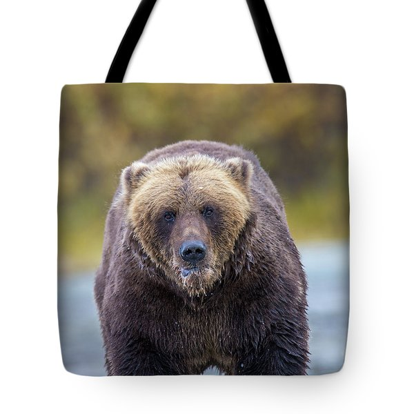Lazy C Angry Bear  Tote Bag
