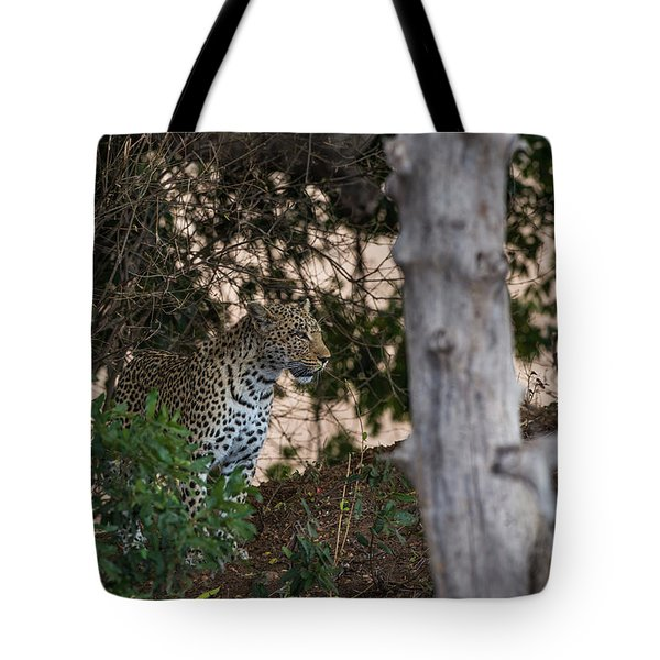 Tote Bag featuring the photograph LC1 by Joshua Able's Wildlife