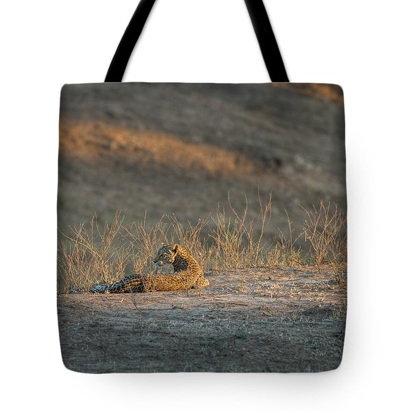 Tote Bag featuring the photograph Lc10 by Joshua Able's Wildlife