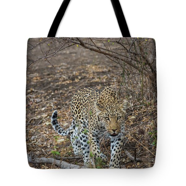 Tote Bag featuring the photograph LC2 by Joshua Able's Wildlife