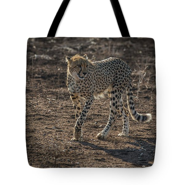 Tote Bag featuring the photograph LC3 by Joshua Able's Wildlife