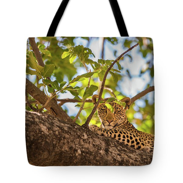 Tote Bag featuring the photograph LC9 by Joshua Able's Wildlife