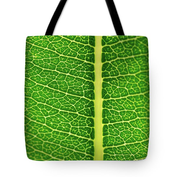 Tote Bag featuring the photograph Leaf Veins by Jeff Phillippi