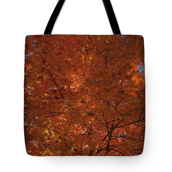 Leaves Of Fire Tote Bag