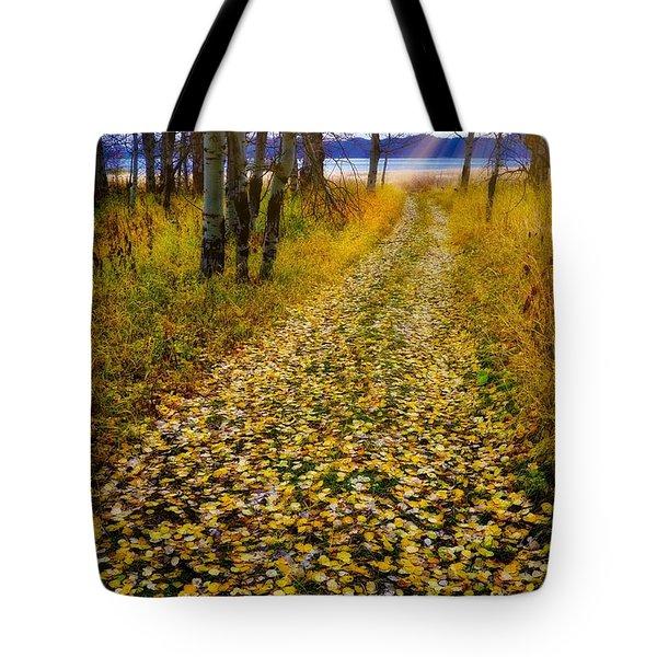 Leaves On Trail Tote Bag