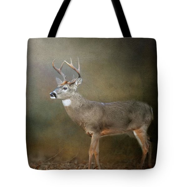Tote Bag featuring the photograph Leaving Autumn Behind by Jai Johnson