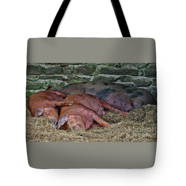 Tote Bag featuring the photograph Let Sleeping Pigs Lie by PJ Boylan