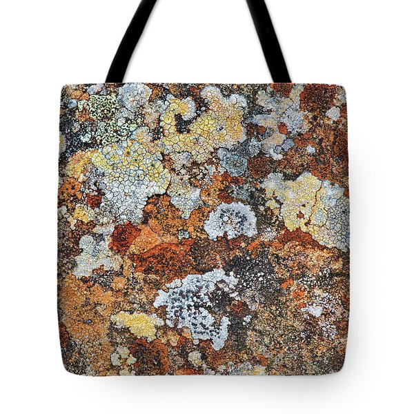 Lichen On Rock Tote Bag