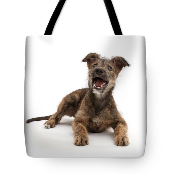 Tote Bag featuring the photograph Life's A Bark by Warren Photographic