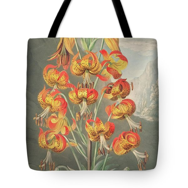 Lily  Lilium Superbum, By William Ward After Philip Reinagle Tote Bag