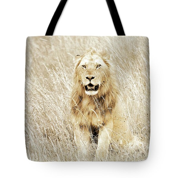 Lion In Kenya Tote Bag