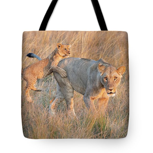 Tote Bag featuring the photograph Lioness And Cub by John Rodrigues