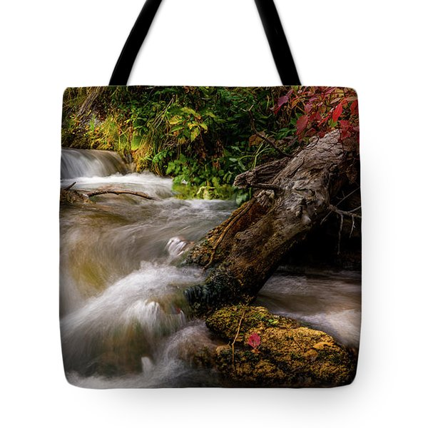 Little Deer Creek Autumn Tote Bag