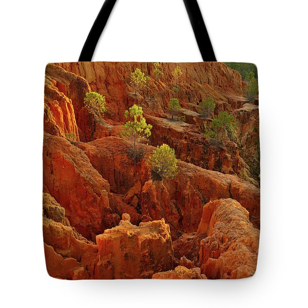 Little Pine Trees Growing On The Valley Cliffs Tote Bag