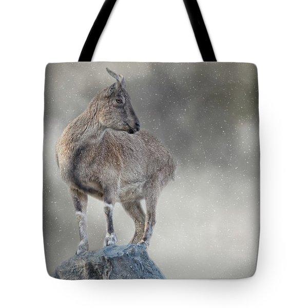 Little Rock Climber Tote Bag