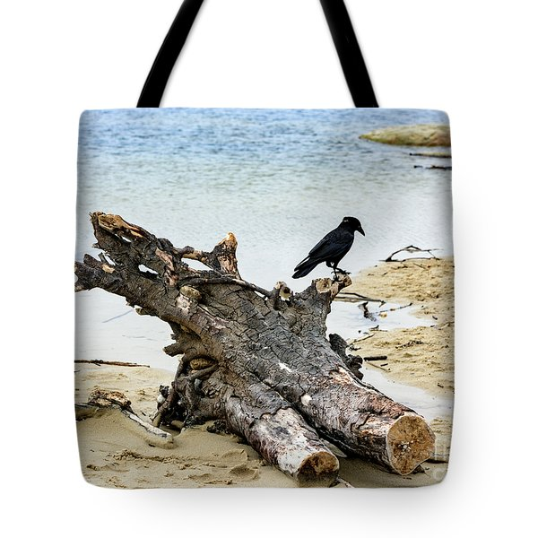 Lone Carmel Crow Atop Driftwood Tote Bag