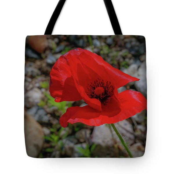 Lone Red Flower Tote Bag