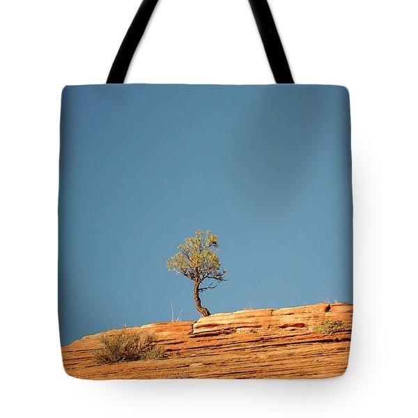 Lone Tree Big Sky Tote Bag