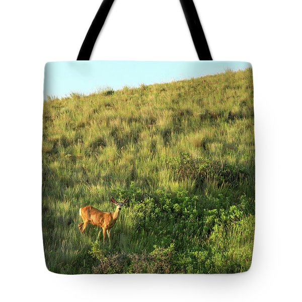 Lonesome Doe Tote Bag
