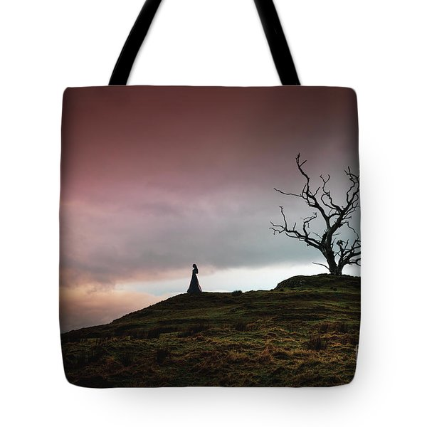 Lonesome Sundown Tote Bag