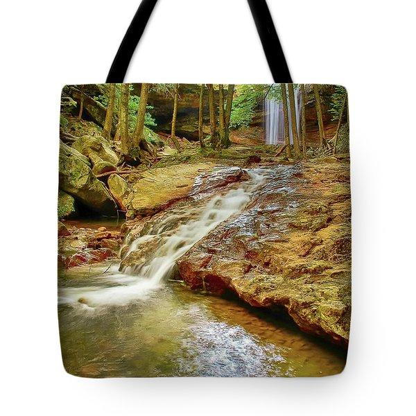 Long Falls Tote Bag