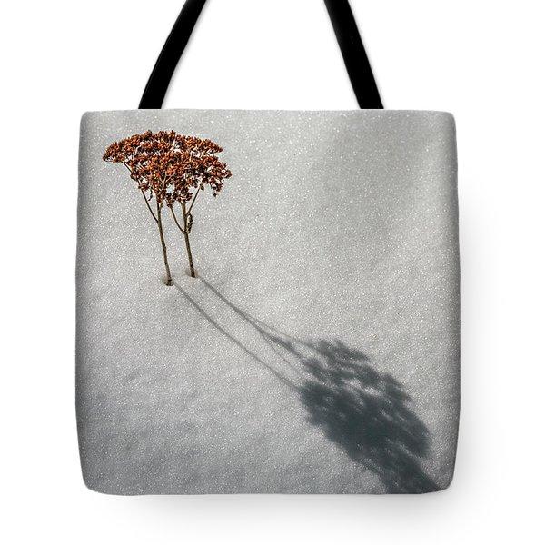 Long Shadow Of Winter Tote Bag