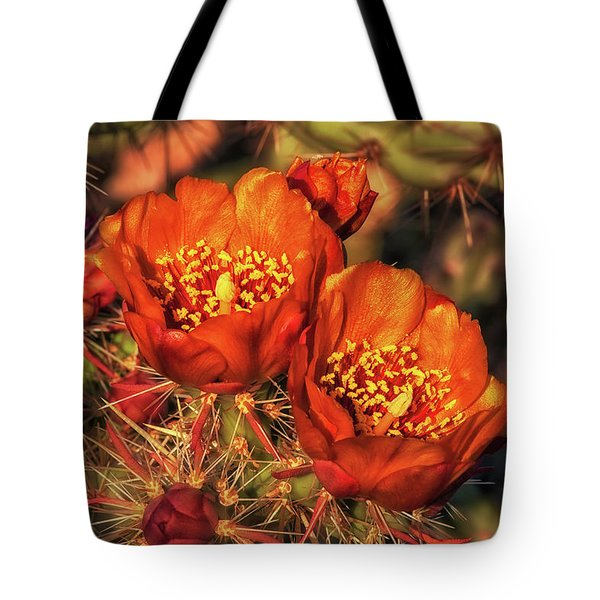 Look But Don't Touch Tote Bag