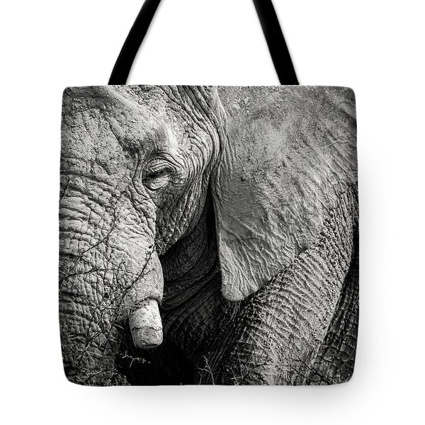 Look Of An Elephant Tote Bag