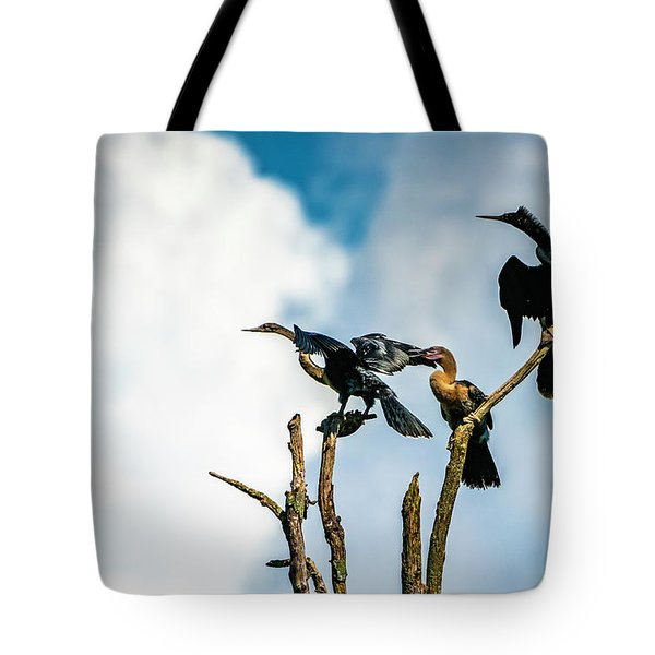 Looking Into The Wind Tote Bag
