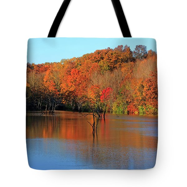 Tote Bag featuring the photograph Looking Out Over Alum Creek by Angela Murdock