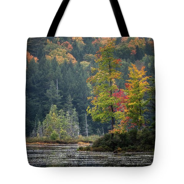 Loon Lake Tote Bag