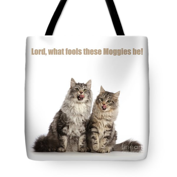 Tote Bag featuring the photograph Lord, What Fools These Moggies Be by Warren Photographic